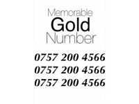 Memorable Mobile Number Easy GOLD - £100 ONO