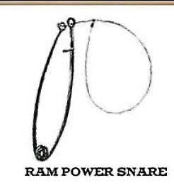 Wanted !!! RAM POWER SNARES!