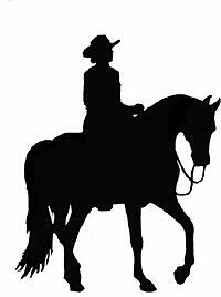 For The Horse Lover ( Western horse movies )