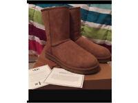 Chestnut Ugg Boots