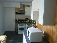 PG Student preferable: a lovely single room avaiable 19 August