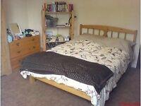 Nice double room to rent (120 pw bills incl)