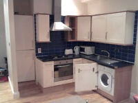 3 BEDROOM FLAT FOR RENT IN BATTERSEA