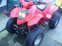 Quads 100cc