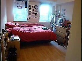Lovely and Bright , CHEAP double room close to Victoria Station