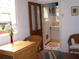 Friendly Gay houseshare near Victoria Line (Bills included)