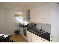 1 Bedroom Apartment - Brixton