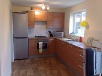 En Suite room to let in Hampton Hargate, Peterborough PE7 8
