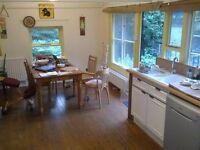 Double bedroom in spacious & homie flat with garden