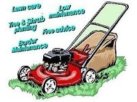 Need Lawn Rolling  Grass Cutting House Cleaning Or House Shift