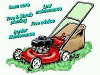 Sunderland gardening services