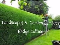 A&J landscaping services