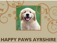 Dog Walking, Day Care, Home Boarding & Pop-in Visits for Dogs by Happy Paws Ayrshire