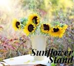 Sunflower Stand