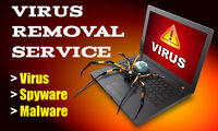 Computer Virus/malware removal and dust cleaning service
