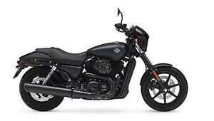 Wanted : Harley Davidson Street 500 Adelaide CBD Adelaide City Preview