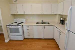 2 Bedroom Apartment for Rent Minutes to Downtown! Belleville Belleville Area image 2
