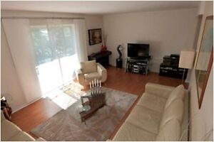 Beautiful 3BR Apartment in Walkerville