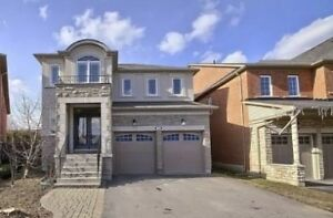 4 bdrm house for rent in Vaughan,Buthusrt/HW7 Jan,1st (or early)