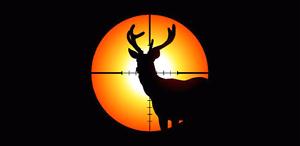 Hunting property wanted Kinglake Murrindindi Area Preview