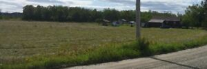 House with 66.63 Acres of Land (Great for Hobby Farm)