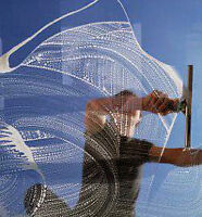 ACCENT Pro Window Cleaning Services... Always on Time & Professi