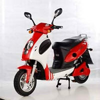 electric scooter - NESA