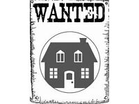 House to let WANTED M14