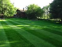 Lawn care grass  lawn maintenance mowing pelouse landscaping