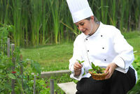 Chef / Line Cook, Needed for Fine Dining - Muskoka, Algonquin P.