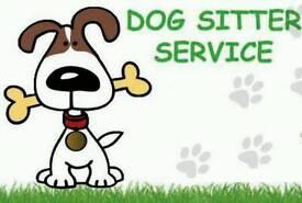 Local dog sitter