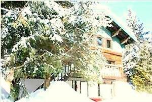 Location de chalet RABAIS EXCEPTIONNEL spa, foyer & billard