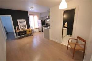 Renovated + Fully furnished 3 bedroom Plateau apt