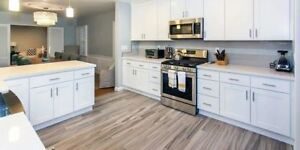 10-15% off High quality Solid birch  kitchens  in stock