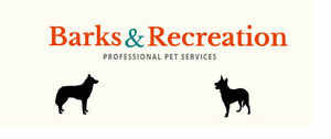 Barks and Rec PTBO, Professional Pet Services