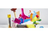 Domestic cleaning,offices,ironing ,and of tenancy