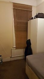 single room available willesden