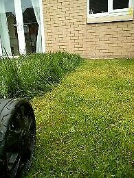 Any Size Grass Cutting
