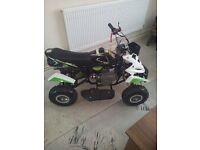 50 cc petrol quad bike