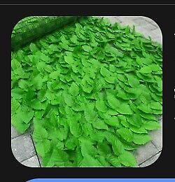 Artificial Ivy Hedge Leaf Screen on a Roll x 2