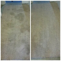 Amazing Carpet Cleaning Deal!!!!