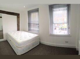 Lovely Double Room near STRATFORD