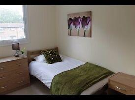 Beautiful single room in friendly shared house.