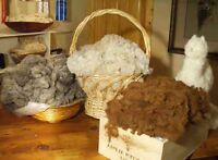 Wanted: Fleece and Fiber for spinning