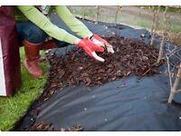 Weed Control Fabric/Membrane black 150cm x 100m