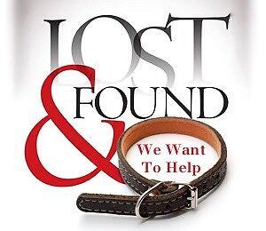Lost and found posts