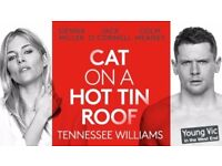Cat on a Hot Tin Roof - 2 x matinee tickets - Wednesday 13th Sept - fantastic price!