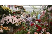 2 x tickets to the RHS Chelsea Flower Show