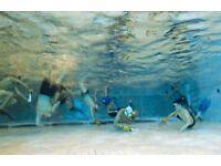 Caversham Underwater Hockey