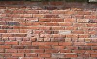 Restauraution des joints de briques
